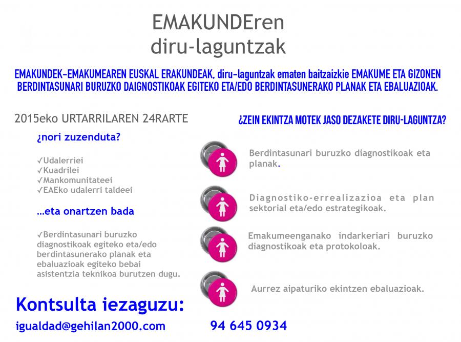 Linea-de-subvenciones-de-Emakunde-para-Diagnosticos-de-planes-de-Igualdad-2-2