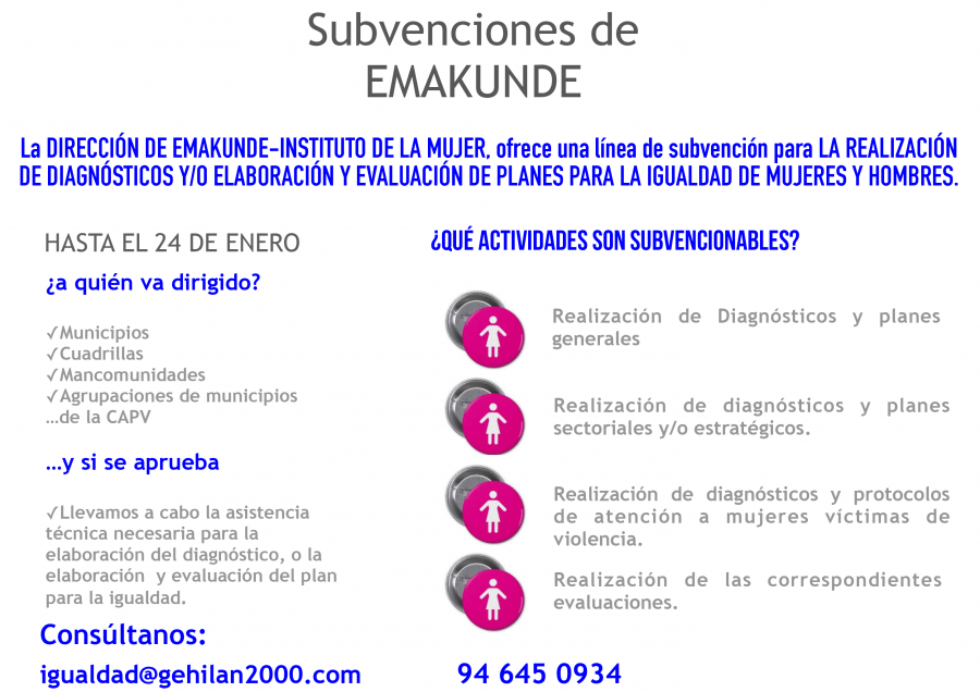 Linea-de-subvenciones-de-Emakunde-para-Diagnosticos-de-planes-de-Igualdad-2-1